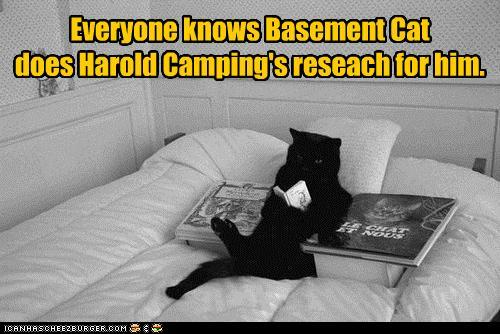 "Basement Cat does Harold Camping's ""Research"" for him"