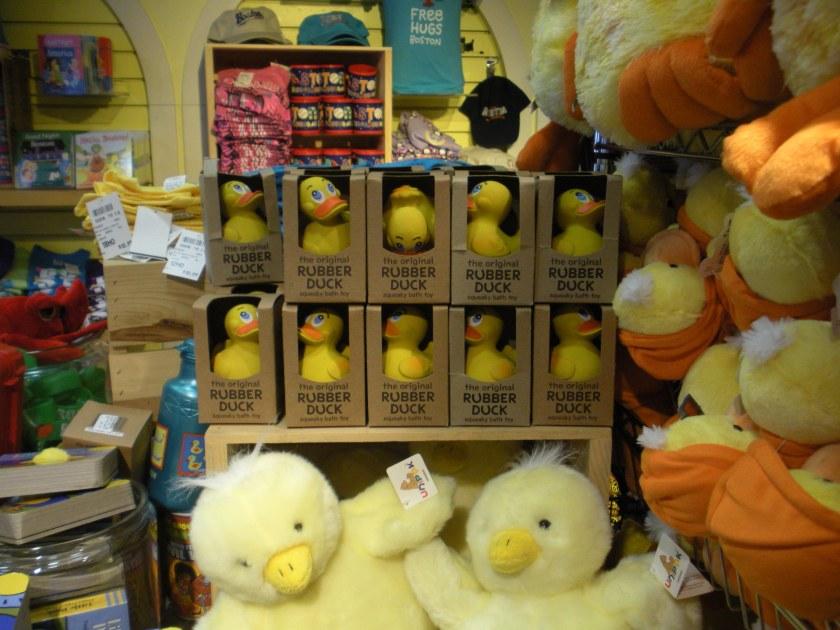 See? Lots of ducks.