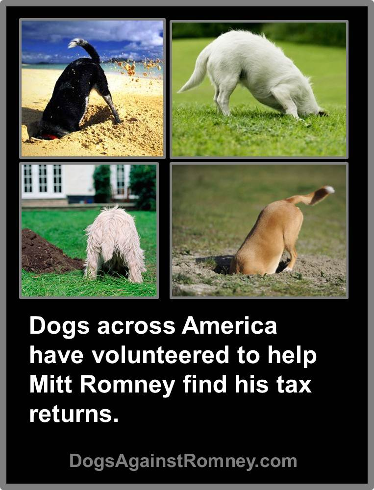 dogs_helping_mitt_find_tax_returns
