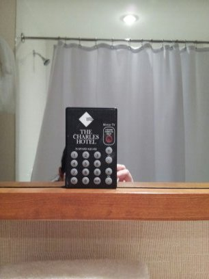 Yes, you're reading that correctly.  That's a remote control for the mirror.  It turns the mirror into a TV.  Really.