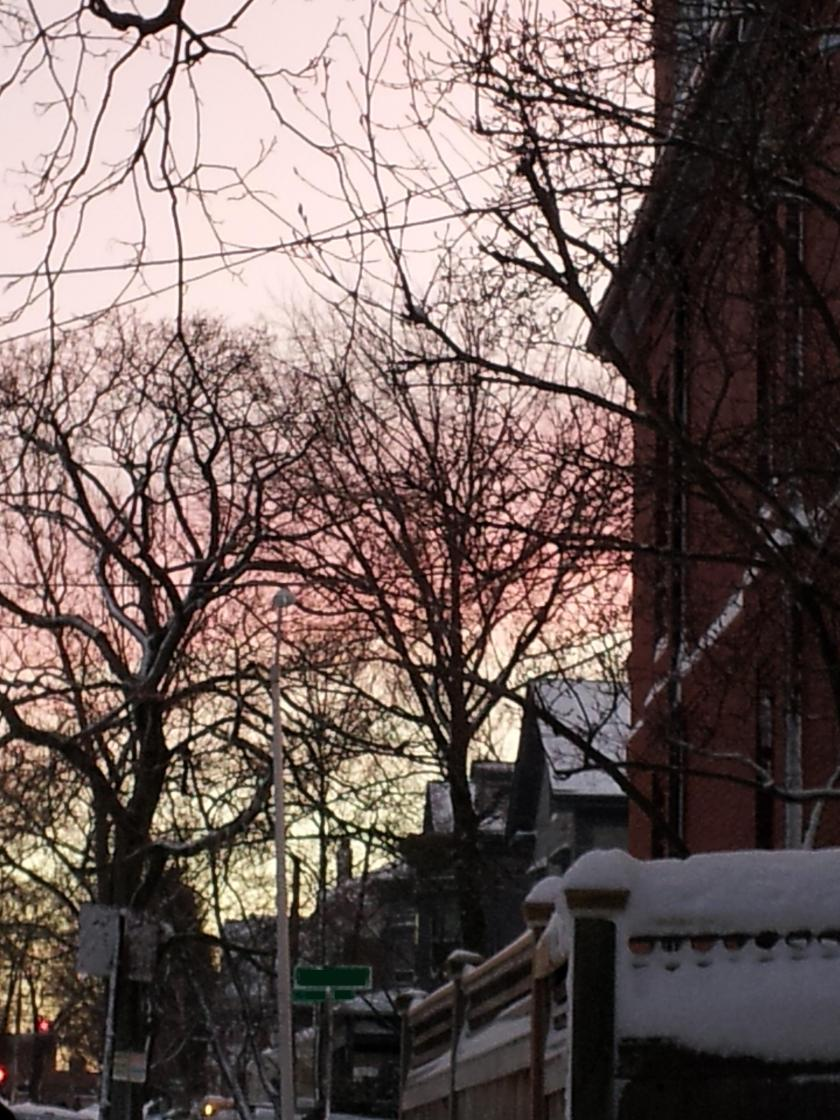 I figure after several solid days of iron grey skies we were due for something pretty.