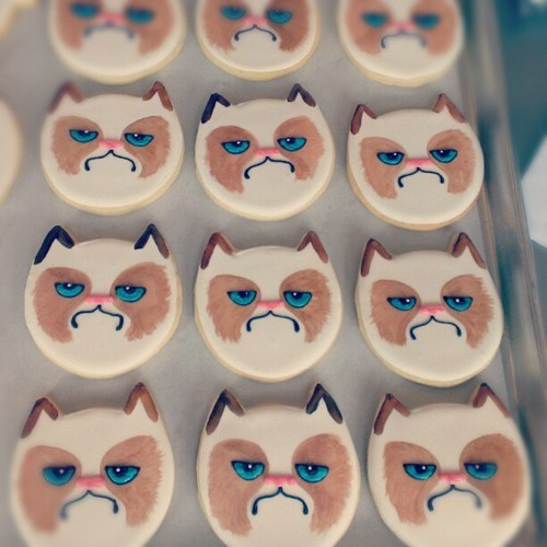 grumpy cat cookie