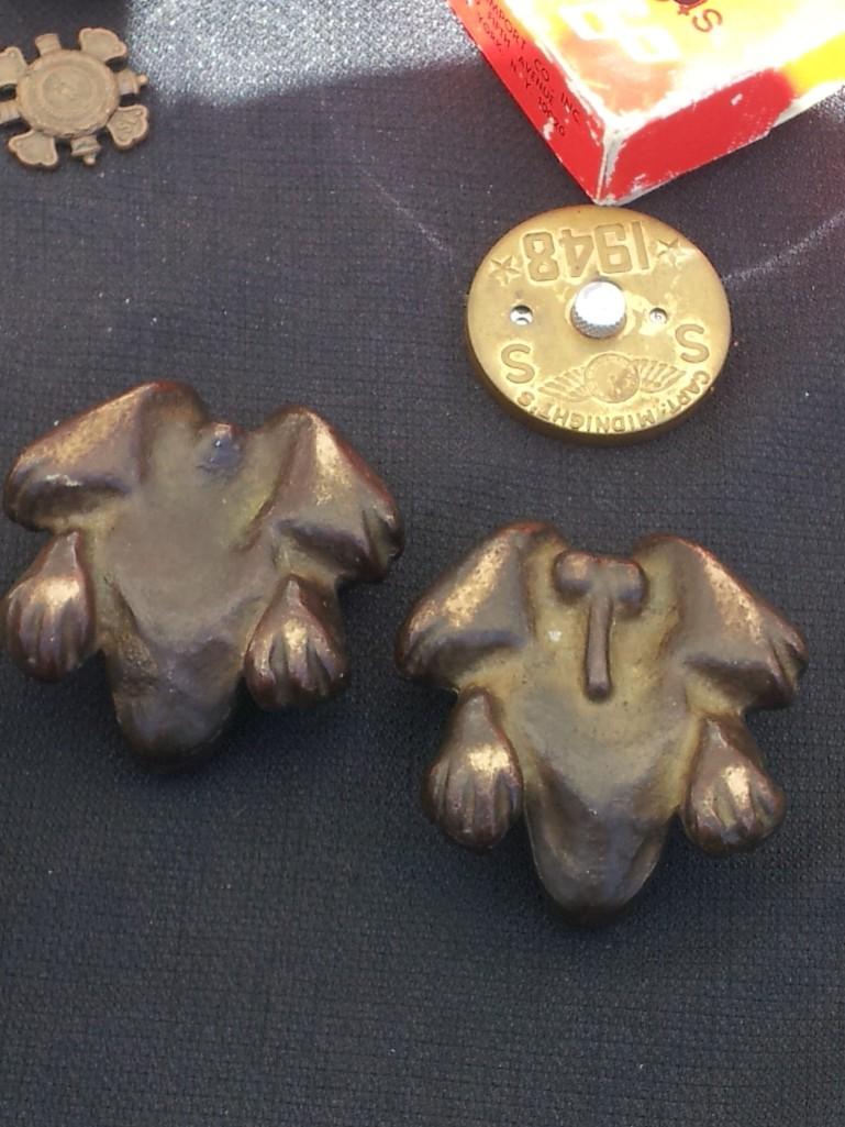 Frog penis