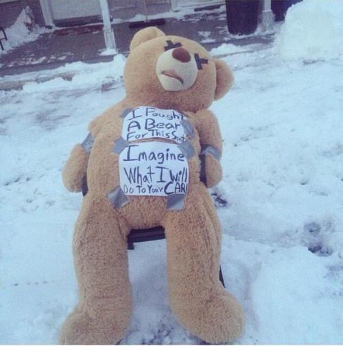 Space saver bear