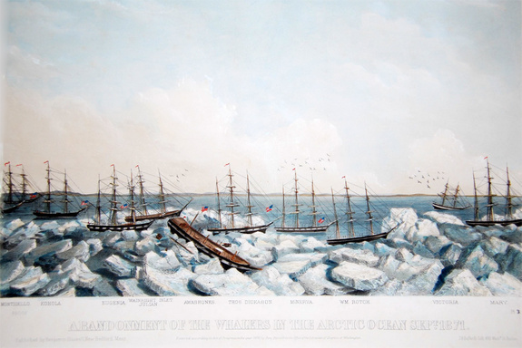 A painting from the period showing many of the ships trapped in the ice. I believe the original is in the whaling museum in New Bedford.