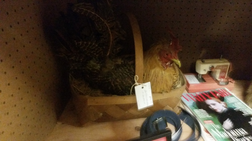 Should you find yourself in need of a taxidermied chicken in a basket they do exist.