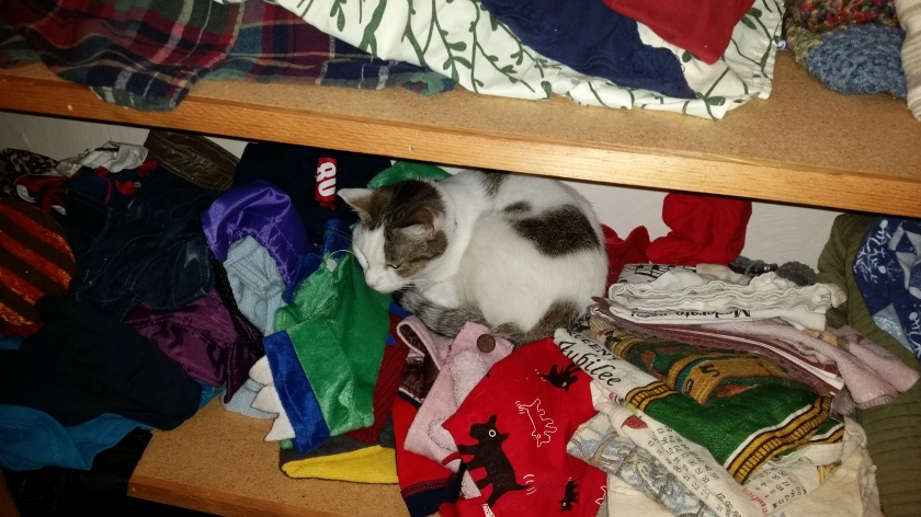 Among her favorite spots are this one shelf in the linen closet.